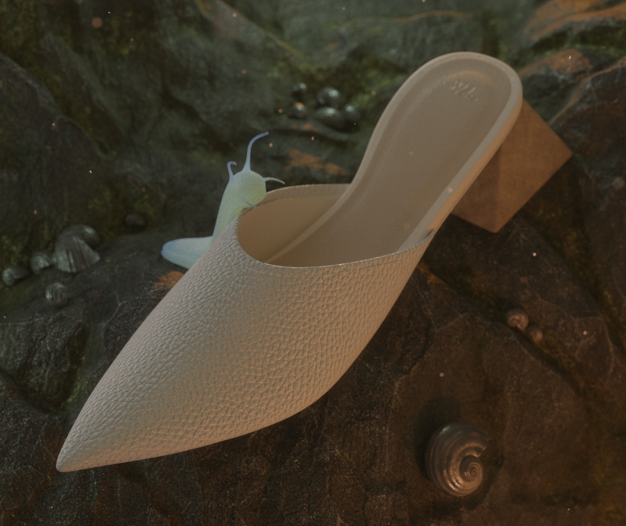Shoe_and-snail